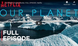 Our Planet | Frozen Worlds | Netflix